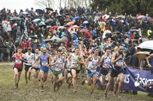 Championnats de France de cross-country 2018 (147)