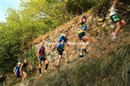 Championnat de France de Trail court (14)