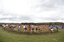 Championnats de France cross-country 2019 (25)