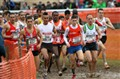 Championnats de France de cross : Elite hommes