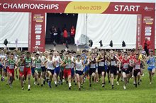 Championnats d'Europe de Cross-country 2019